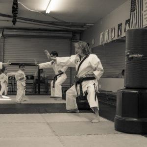 Karen Mitchell Impact Martial Arts Pelham AL