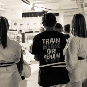 Training at Impact Martial Arts Pelham AL